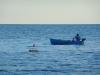 un barchino nel blu