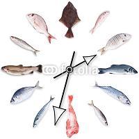orologio con  pesci