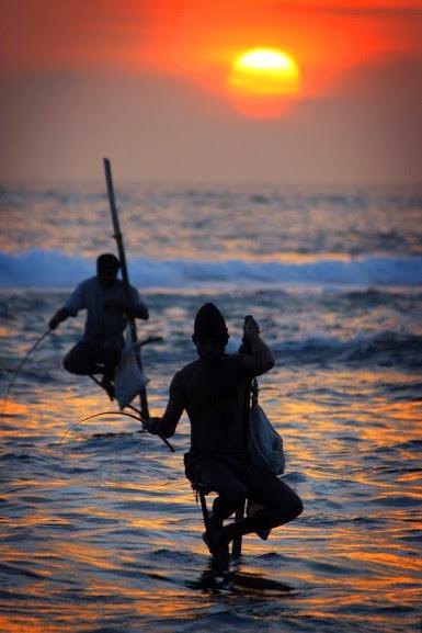 pesca sulla pertica