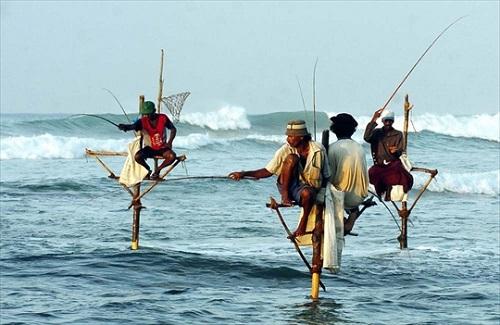 pescatori sulla pertica